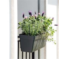 Acheter Deroma Kit de Jardiniere Enjoy a réserve d'eau - 9,6 L - 50 x 16,1 x H 16 cm - Noir Anthracite au meilleur prix